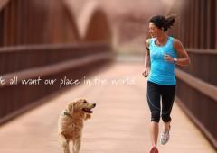 ¡Salte a correr con tu perro!