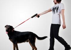 Correa para Perros en Forma de Pistola